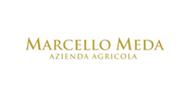 Italcheck - clienti - Marcello Meda